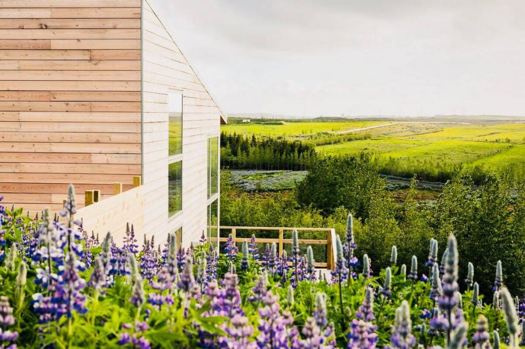 Cabin near to Reykjavik